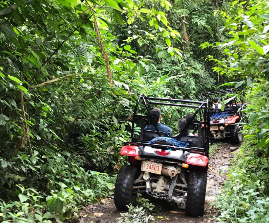 jungle atv uvita